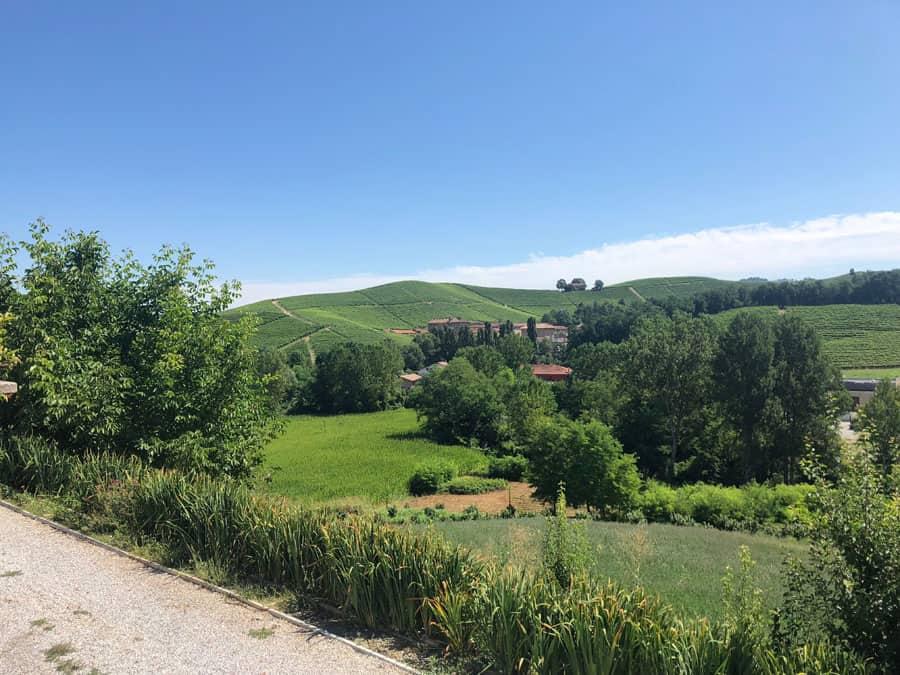 foto panoramica delle langhe in piemonte