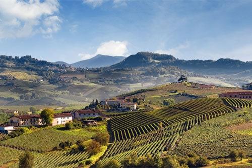 itinerari tra vigne e castelli nelle langhe